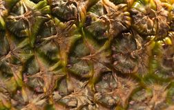 Abstrakcjonistyczna ananasowa skóry background/tekstura fotografia stock