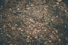 Abstrakcjonistyczna brąz ziemi powierzchnia Zamyka w górę naturalnego tła Fotografia Stock