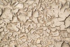 Abstrakcjonistyczna brown tekstura spalona piaskowata ziemia Fotografia Stock