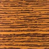 Abstrakcjonistyczna drewniana tekstura z ostrością na drewna adrze Mahoń w Fotografia Royalty Free