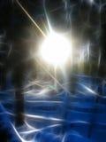 abstrakcjonistyczna forrest rozjarzona zima Zdjęcia Royalty Free