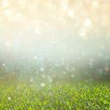 Abstrakcjonistyczna fotografia świeży trawy pole i jaskrawi bokeh światła przecinający proces skutek Zdjęcie Royalty Free