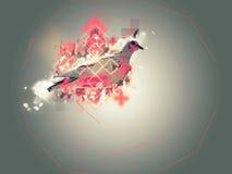Abstrakcjonistyczna gołębia ilustracja Fotografia Royalty Free