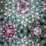 Abstrakcjonistyczna kalejdoskopowa tekstura Fotografia Stock