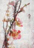 abstrakcjonistyczna karty etc kwiatu ilustracja wiele fotografie interliniuje teksta kolor żółty ty Fotografia Stock