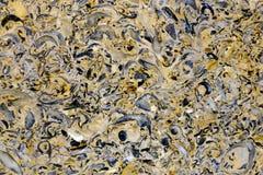 Abstrakcjonistyczna kopalna tekstura Obrazy Royalty Free