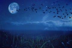 abstrakcjonistyczna krajobrazowa noc Fotografia Royalty Free
