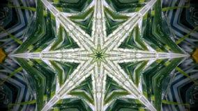 Abstrakcjonistyczna kwiatu kształta 8 i wzoru popierająca kogoś gwiazda Obraz Stock