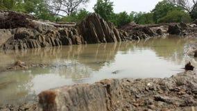 Abstrakcjonistyczna laguna Obrazy Royalty Free