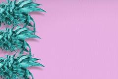 Abstrakcjonistyczna lato sztuka ananasowy liścia tło Fotografia Royalty Free