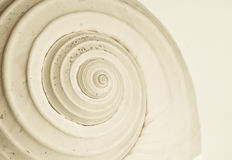 Abstrakcjonistyczna ślimaczek spirala Fotografia Royalty Free