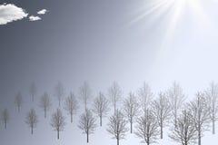 abstrakcjonistyczna mgły pogody zima Obrazy Stock