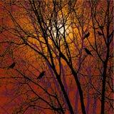 Abstrakcjonistyczna natura - wektor Zdjęcia Royalty Free