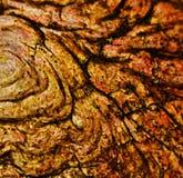 Abstrakcjonistyczna organicznie tekstura Obrazy Stock