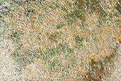Abstrakcjonistyczna Plastikowa tło tekstura z słońca światłem Zdjęcie Royalty Free