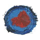 Abstrakcjonistyczna Pomarańczowa Syjamska Walcząca Betta ryba na Błękitnym tle ilustracja wektor
