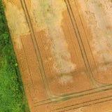 Abstrakcjonistyczna powietrzna fotografia pola i świrzepy z zielenią i ye Obraz Stock