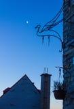 Abstrakcjonistyczna ptasia sztuka przy nocą zdjęcie royalty free