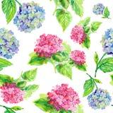 Kwiatu wzór Fotografia Royalty Free