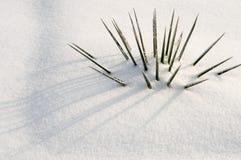 abstrakcjonistyczna tła śniegu zima Zdjęcie Stock