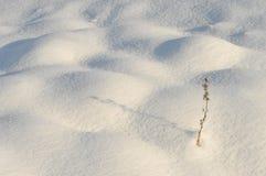 abstrakcjonistyczna tła śniegu zima Fotografia Stock