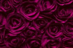 abstrakcjonistyczna tła czerwieni róży powierzchni tekstura Fotografia Royalty Free
