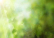 abstrakcjonistyczna tła natury wiosna Zdjęcia Stock