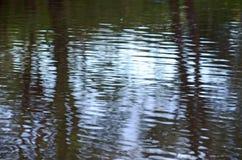 Abstrakcjonistyczna tła tła natury czochr woda Obraz Stock
