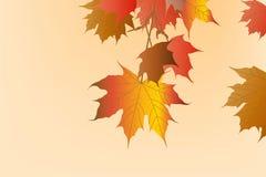 Abstrakcjonistyczna tło jesień Cześć Obrazy Stock