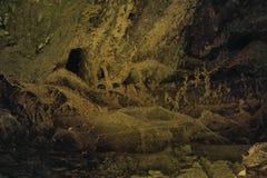 Abstrakcjonistyczna tło tekstura dla mistycznego wizerunku drewno i sieć Obrazy Royalty Free