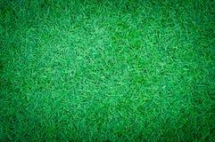 Abstrakcjonistyczna tekstura Zielonej trawy jarda tło Obraz Stock