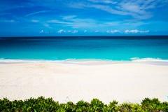 abstrakcjonistyczna tropikalna plaża Zdjęcie Stock
