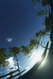 abstrakcjonistyczna tropikalna woda Zdjęcia Royalty Free