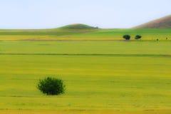 abstrakcjonistyczna wiejska sceneria Fotografia Royalty Free