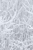 abstrakcjonistyczna zima Zdjęcia Royalty Free