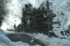 Abstrakcjonistyczna zima Zdjęcie Royalty Free