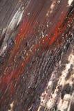 Abstrakcjonistyczne farb smugi, oceny na Czarnym tle i Obraz Stock