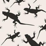 abstrakcjonistyczne jaszczurki Zdjęcie Stock
