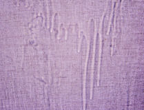 Abstrakcjonistyczne tło tekstury purpury Zdjęcia Stock