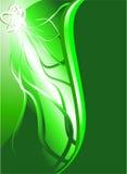 abstrakcjonistyczne zielone liny Zdjęcie Stock