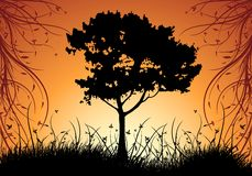 abstrakcjonistycznego dekoracyjnego sunset illustratio środowisk naturalnych wektora Fotografia Royalty Free