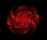 Abstrakcjonistycznego fractal czerwony kwiat Zdjęcie Stock