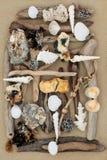 abstrakcjonistycznego jasnego koloru plaży tła zabawna ilustracja przerafinowywał wektora Zdjęcia Royalty Free