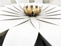 2 abstrakcjonistycznego kwiecisty Fotografia Stock