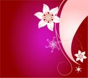 abstrakcjonistycznego tła kwiecista różowa czerwień Zdjęcie Royalty Free