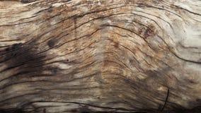 abstrakcjonistycznego tła naturalny tekstury drewno Obraz Royalty Free