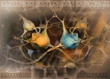 abstrakcjonistycznego tła nerwowy neuronów system Obrazy Royalty Free