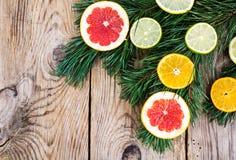 Abstrakcjonistycznej choinki karmowy tło z grapefruitowym, mandarynka, cytryna, wapno, kumquat Obrazy Stock