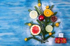 Abstrakcjonistycznej choinki karmowy tło z grapefruitowym, mandarynka, cytryna, wapno, kumquat Zdjęcie Royalty Free