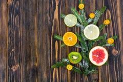 Abstrakcjonistycznej choinki karmowy tło z grapefruitowym, mandarynka, cytryna, wapno, kumquat Obraz Royalty Free